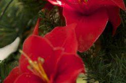 Natale Fondazione Vertova