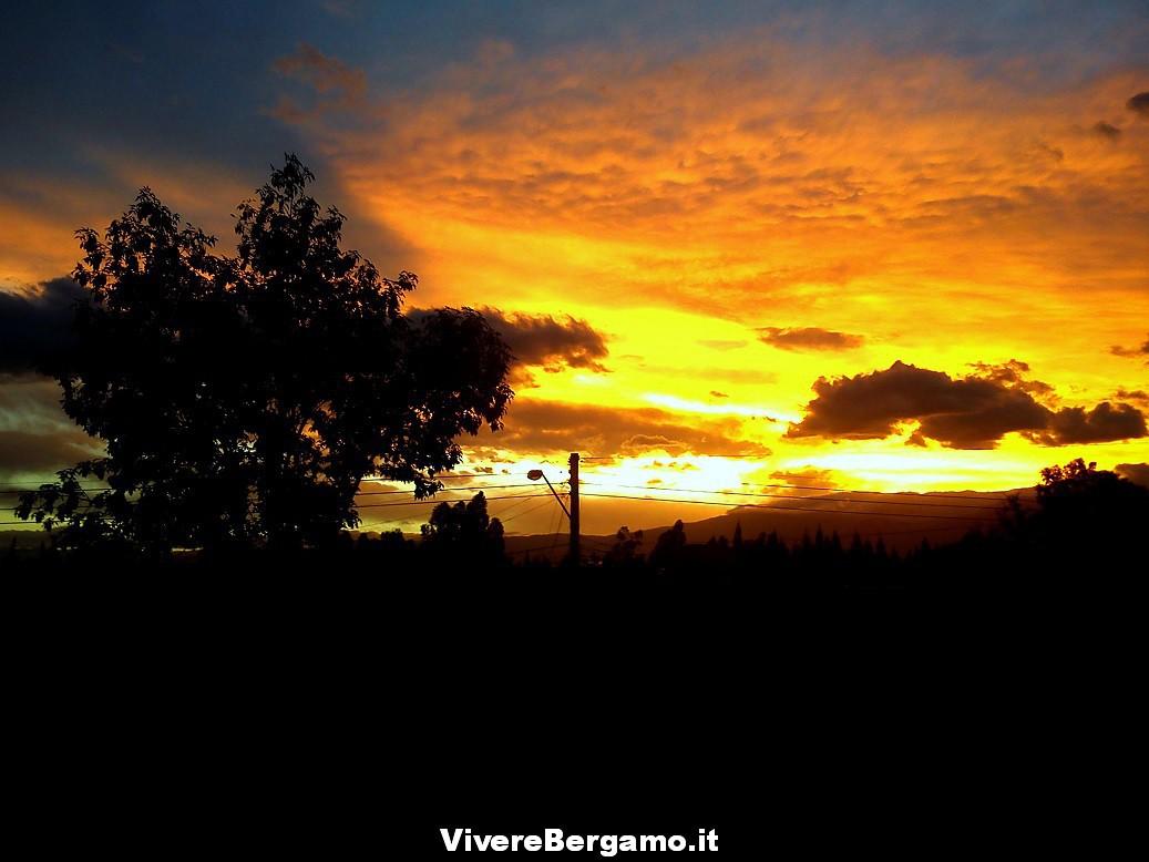 Articolo Vivere Bergamo