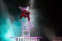 Psichiatric Circus a Bergamo