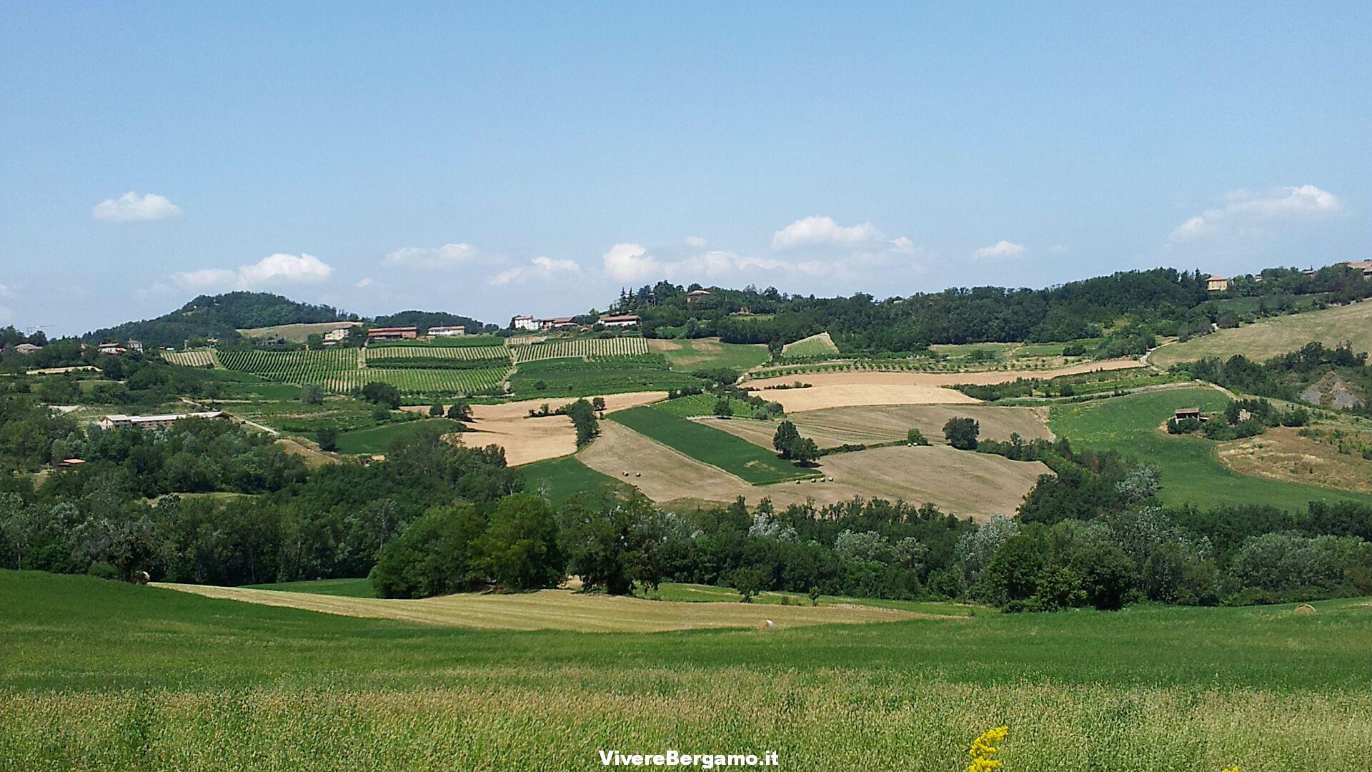 Sant'Agostino Degustazione vini 2 agosto