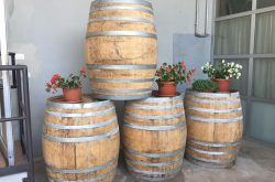sagra-dell-uva-a-pontida-2016-bergamo