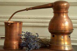 Alambicco per estrazione oli essenziali