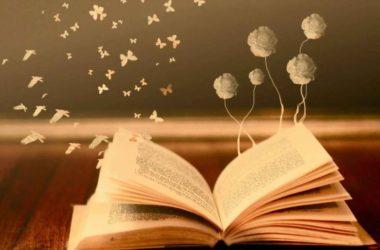 2°Concorso Letterario di Poesia in lingua italiana e in dialetto bergamasco