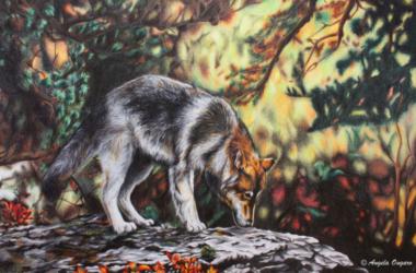 L'essenza della realtà riflessa su tela, mostra di Angela Ongaro ad Albino